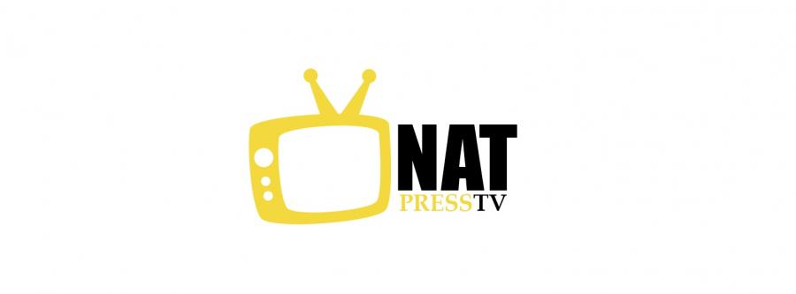 Логотип Интернет телевидения NatPressTV